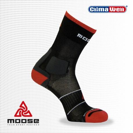 Moose Hike
